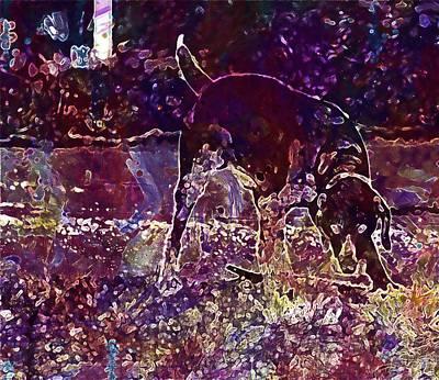 Dog Hunting Dog Pointing Dog  Art Print