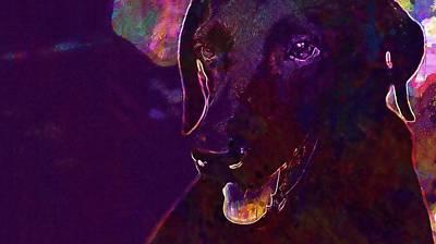 Labrador Digital Art - Dog Labrador Black Canine  by PixBreak Art