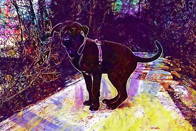 Labrador Digital Art - Dog Labrador Black View Puppy  by PixBreak Art