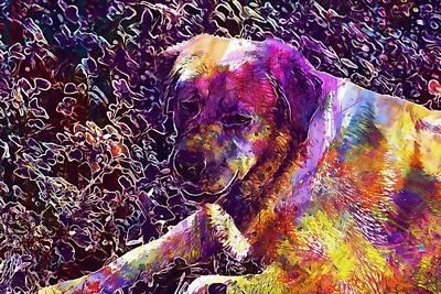 Labrador Digital Art - Dog Labrador Retriever Golden Fur  by PixBreak Art