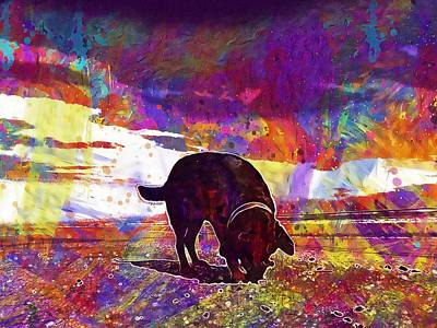 Labrador Digital Art - Dog Labrador Sea Beach  by PixBreak Art