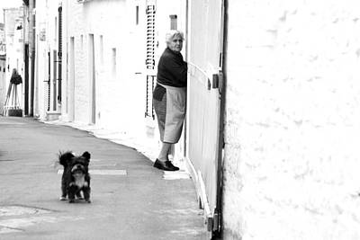 Photograph - Dog Loose by Jez C Self