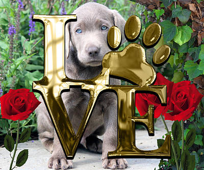 Mixed Media - Dog Lover Collection Weimaraner Dog Puppy by Marvin Blaine