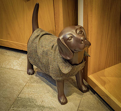 Photograph - Dog Mannequin by Jean Noren