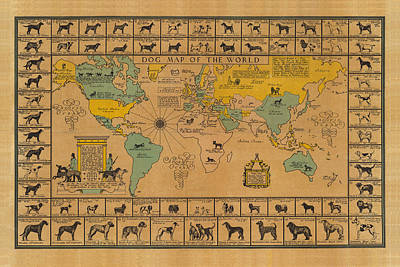 Old World Vintage Cartographic Maps Wall Art - Drawing - Dog Map Of The World - Breeds Of Dogs From Around The World - For Dog Lovers - Antique Chart by Studio Grafiikka