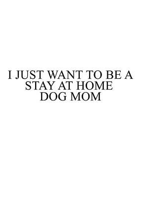 Photograph - Dog Mom by Andrea Anderegg