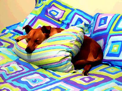 Photograph - Dog Nap - Oil Effect by Kathy K McClellan
