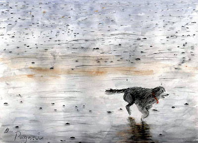 Dog On Beach Art Print