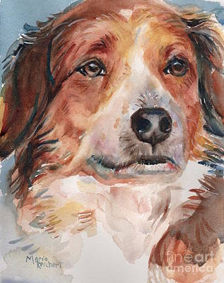 Dog Painting In Watercolor Art Print by Maria's Watercolor