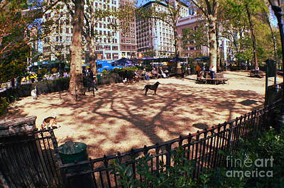 Photograph - Dog Park In New York City by Christopher Shellhammer