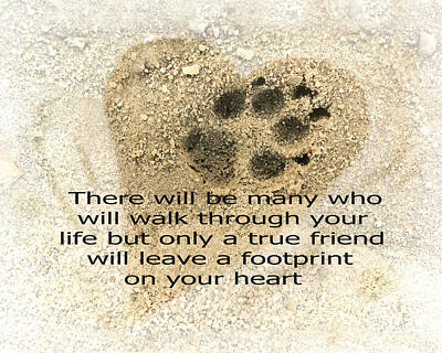 Photograph - Dog Paw Print  - Photo Art  by Ann Powell