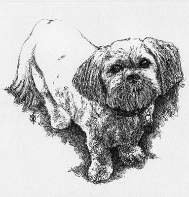 Contemporary Dog Art Drawing - Dog Portrait II by KM Paintings