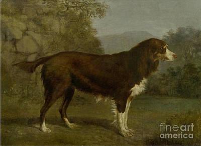 Dog In Landscape Painting - Dog Portrait In A Landscape by MotionAge Designs