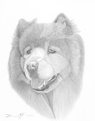 Drawing - Dog Portrait Logi by Dave Nevue