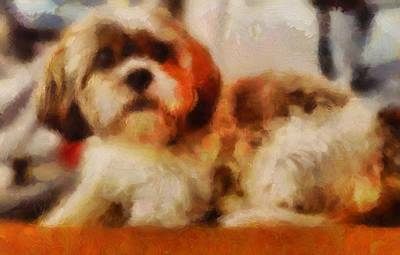 Painting - Dog Portrait Shih Tzu Resting Curled In Orange And Brown In Acrylic And Soft Brush Strokes by MendyZ