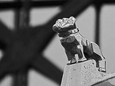 Photograph - Dog Pound Cleveland by Mike Bruckman