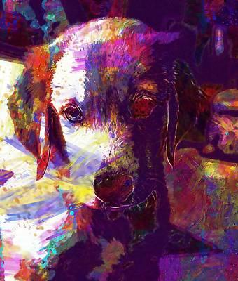 Golden Retriever Digital Art - Dog Puppy Golden Retriever Adorable  by PixBreak Art