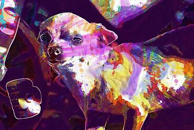 Dachshund Art Digital Art - Dog Sausage Dachshund Teckel Dog  by PixBreak Art