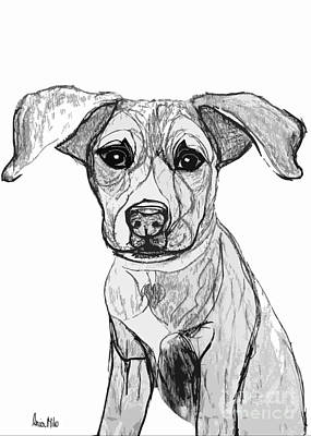 Digital Art - Dog Sketch In Charcoal 7 by Ania M Milo