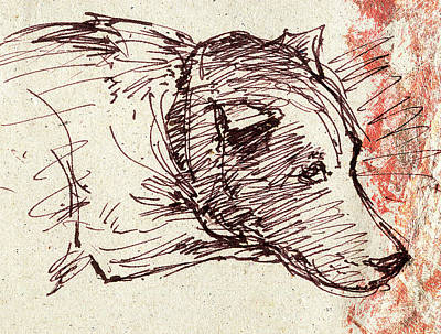 Drawing - Dog  Sketch by Nato  Gomes