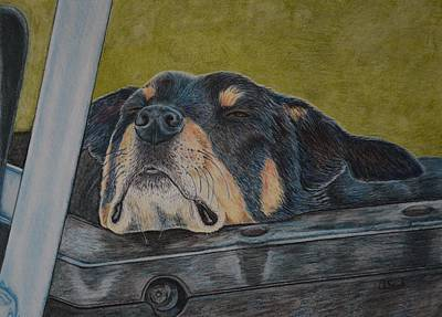 Kelpie Drawing - Dog Tired by Arlette Seib