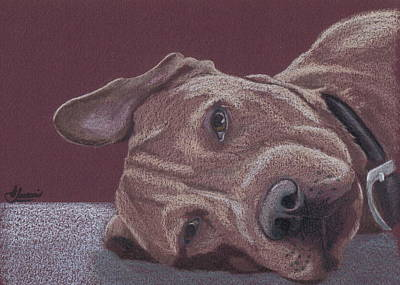Dog Tired Art Print by Stacey Jasmin