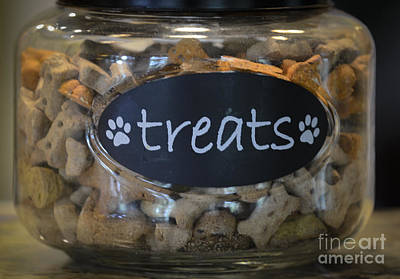 Photograph - Dog Treats by Dale Powell