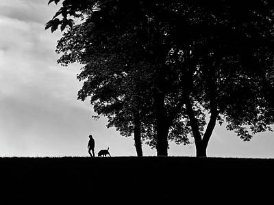 Photograph - Dog Walk - 365-185 by Inge Riis McDonald