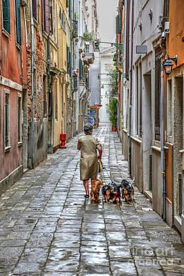 Photograph - Dog Walk by Rick Mann