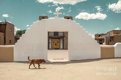 Photograph - Dog Walk by Sandy Adams