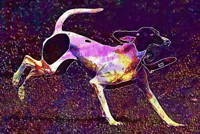Digital Art - Dog Wildpark Poing Play Romp Cute  by PixBreak Art