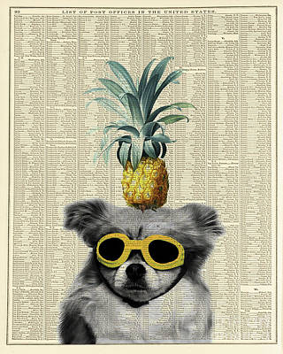 Decoupage Photograph - Dog With Goggles And Pineapple by Delphimages Photo Creations