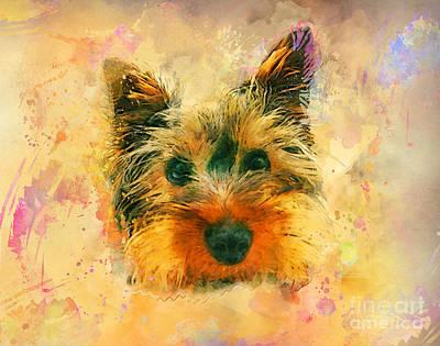 Yorkshire Terrier Watercolor Digital Art - Dog Yorkshire Terrier Art by Justyna JBJart