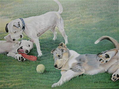 Puppies Playing Drawing - Dogs At Play Commission by Rita Niblock