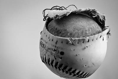 Softball Photograph - Dog's Ball by Bob Orsillo