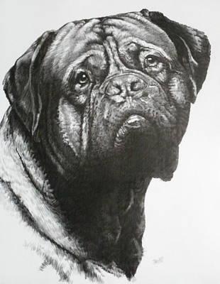 Drawing - Dogue De Bordeaux by Barbara Keith
