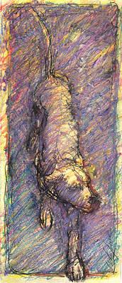 Drawing - Dog_v by Nato  Gomes
