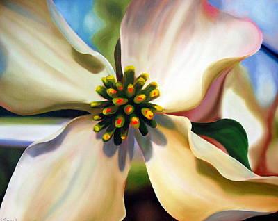 Four Seasons Tree Nature Summer Painting - Dogwood Bloom by Rachel Lawson