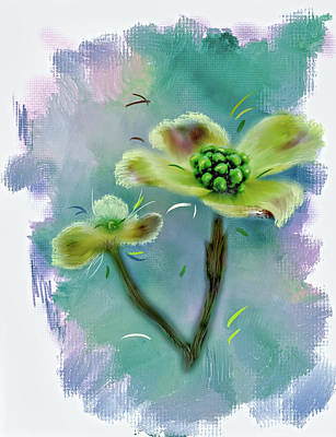 Grettings Digital Art -  Dogwood Blossom by Mary Timman