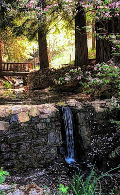 Photograph - Dogwood Creek by Steph Gabler