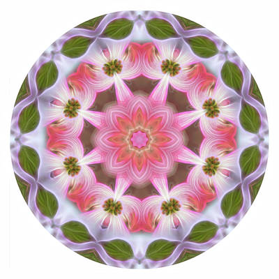 Digital Art - Dogwood Energy Mandala by Beth Sawickie