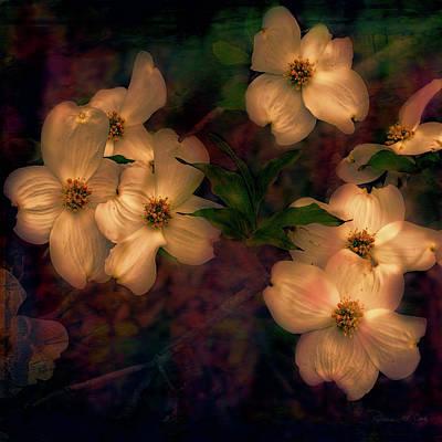 Dogwood Flowers Alight Art Print by Bellesouth Studio
