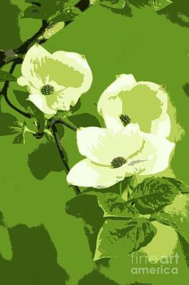 Photograph - Dogwood Poster by Frank Townsley