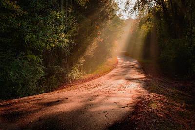 Photograph - Dogwood Ridge by Mark Guinn