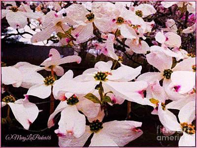 Tree Blossoms Mixed Media - Dogwood Tree  by MaryLee Parker