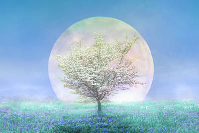 Photograph - Dogwoods On A Blue Moon by Debra and Dave Vanderlaan
