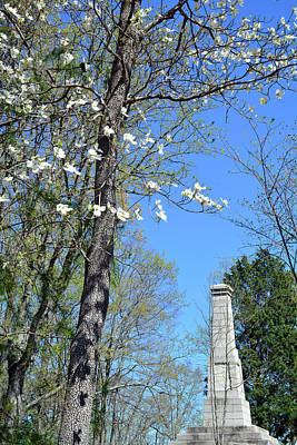 Dogwoods On Crest Of Kings Mountain National Military Park Art Print by Bruce Gourley