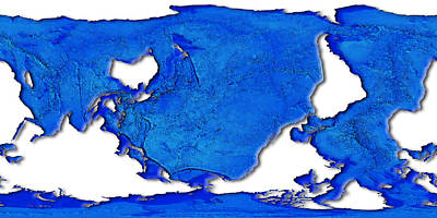 Digital Art - Dolphin World Map by Frans Blok