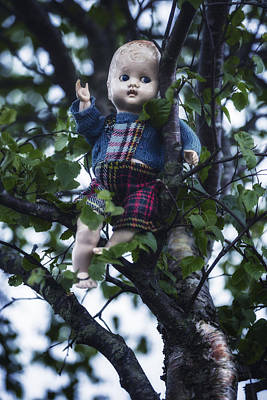 Doll Photograph - Doll In Tree by Joana Kruse