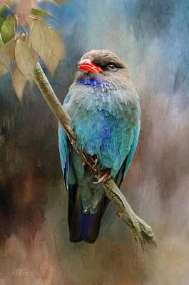 Photograph - Dollar Bird by Margaret Goodwin